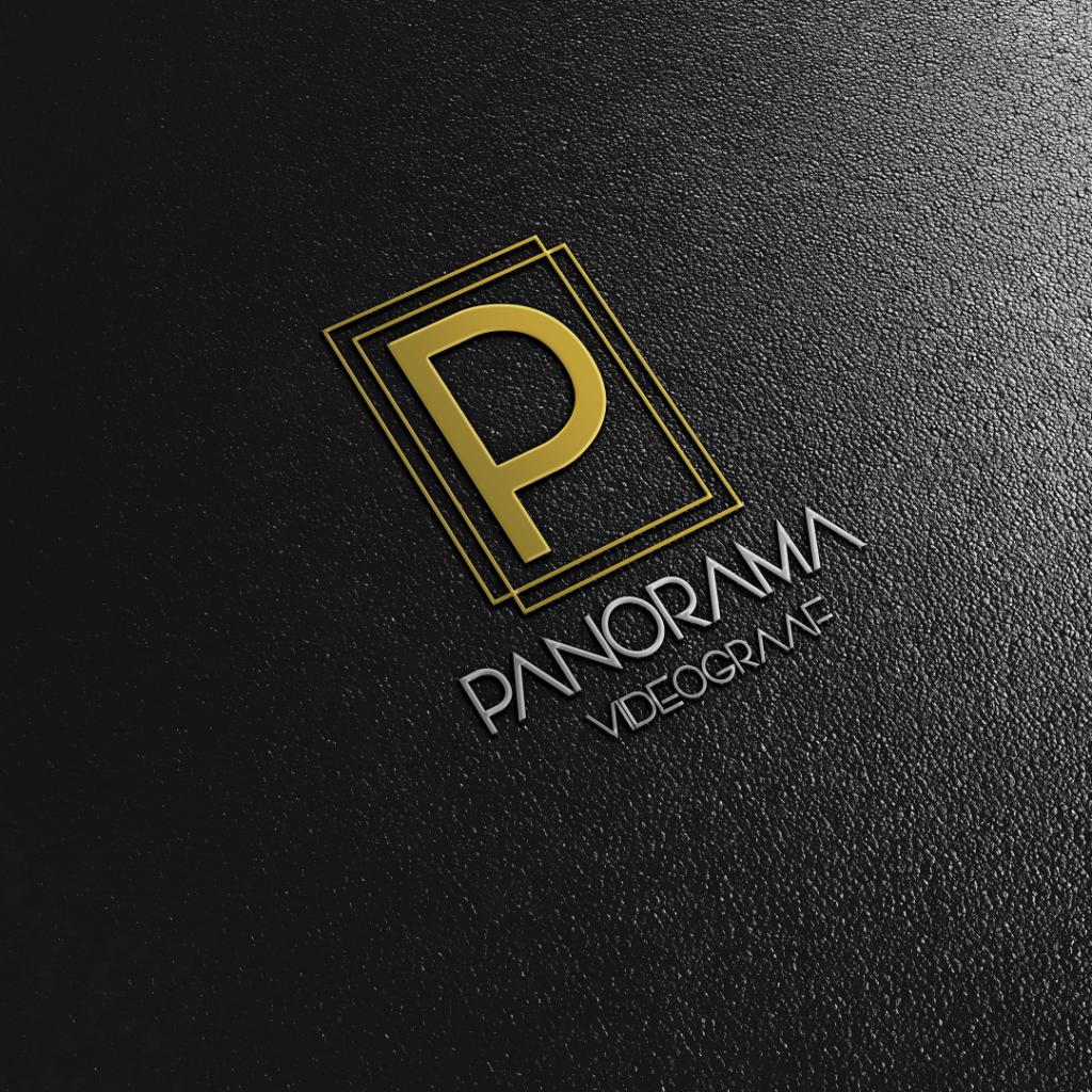 Panorama 3D Logo